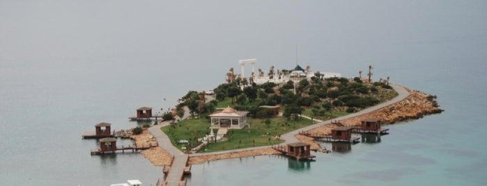 Rixos Beach is one of Arzu'nun Beğendiği Mekanlar.