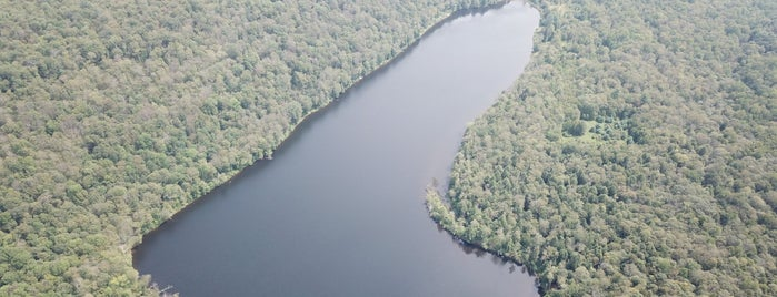 Crystal Lake Wild forest is one of Cindy'in Beğendiği Mekanlar.