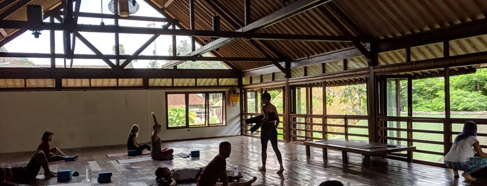 Radiantly Alive is one of Yoga in Bali.