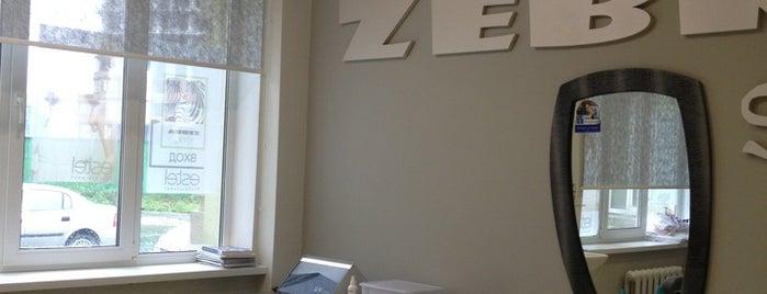 Zebra Sport is one of Nikolay'ın Beğendiği Mekanlar.