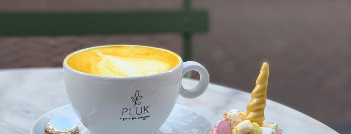 Pluk Amsterdam is one of Amsterdam.