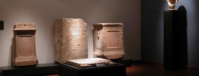 Museo archeologico nazionale di Firenze is one of FIRENZE E LA SCIENZA.