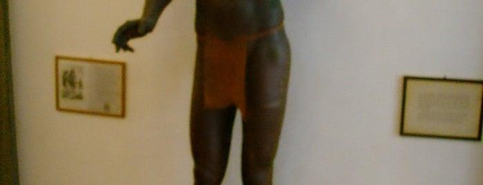 Museo di Antropologia ed Etnologia is one of FIRENZE E LA SCIENZA.