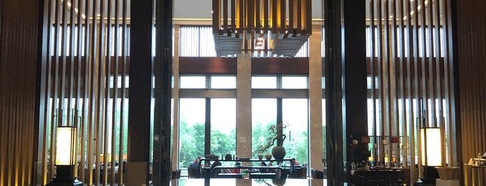 Hyatt Regency Xi'an is one of Hotels.