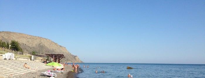 Пляж в пос. Морское is one of Locais curtidos por Max.