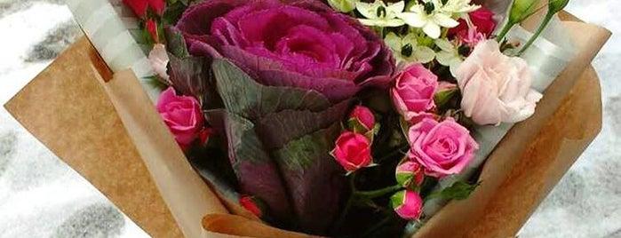 Фея Флора Квiти та Кава / Feya Flora Flowers & Coffee is one of Kiev2gun.