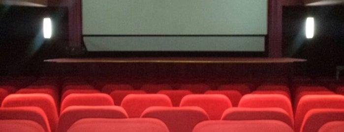 Cinema Victoria is one of Lugares favoritos de Matei.
