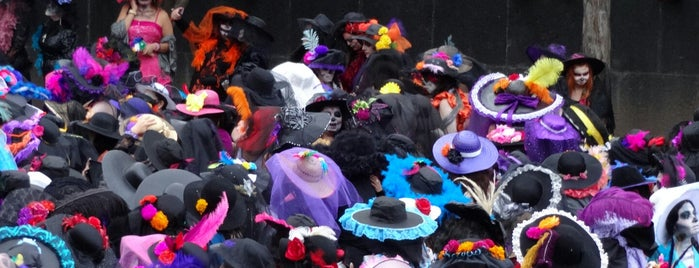 La Catrina Fest is one of Mayra 님이 좋아한 장소.
