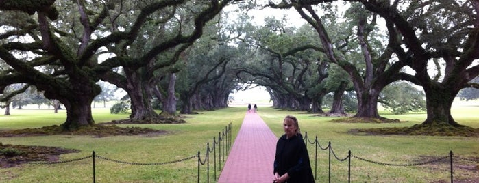 Oak Alley Plantation Restaurant is one of Go back to explore: New Orleans.