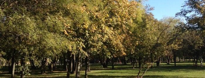 Óhegy park is one of Ágnes 님이 좋아한 장소.