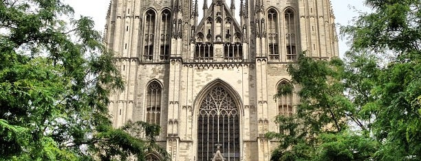 Cathédrale Saint-Michel et Gudule is one of สถานที่ที่ Carl ถูกใจ.