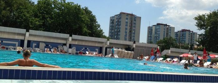Bakirkoy Spor Klubu Havuz Tesisleri is one of Lugares guardados de Harika.