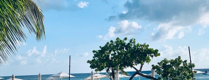 Grand Cayman Kimpton Seafire Resort & Spa is one of In DB Encounter (Latin America).