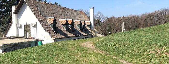 "Planinarski dom ""Vojvodina"" is one of Out of Belgrade."