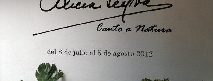 """Museo Nacional de la Acuarela """"Alfredo Guati Rojo"""" is one of Museos Ciudad de México."""