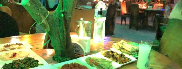 Hacı Meyhane is one of Gastro Meyhaneler 1.