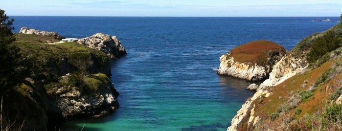Point Lobos State Reserve is one of CA road trip.