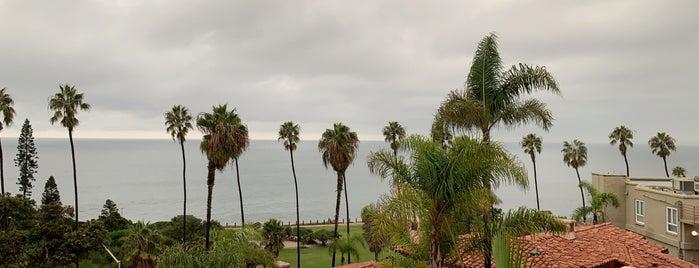 The Med is one of Orte, die Erica gefallen.