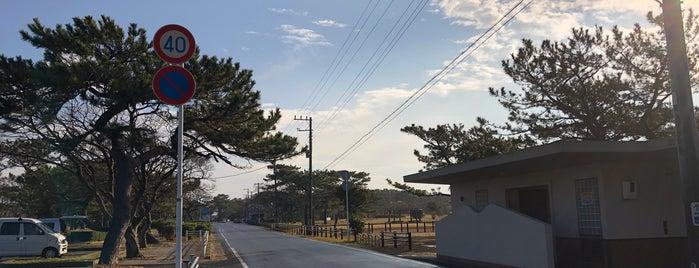 富津公園 is one of ジャックさんのお気に入りスポット.
