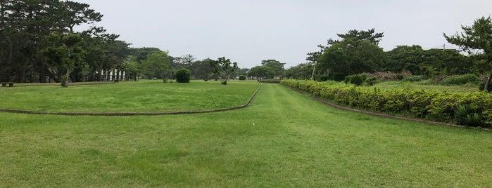 Futtsu Park is one of Tempat yang Disukai ジャック.