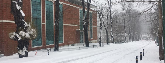 İstanbul Üniversitesi Orman Fakültesi Irmak Binası is one of Serav->V ile :) 님이 좋아한 장소.