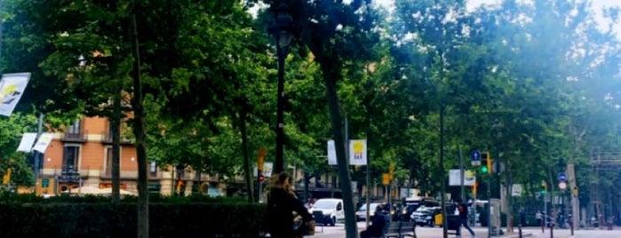Ciutat Vella is one of Tempat yang Disukai Erkan.