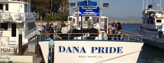 Dana Wharf Whale Watching is one of www.TheOrangeCountyLife.com.