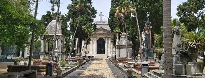 Cementerio Central is one of Lugares guardados de Fabio.