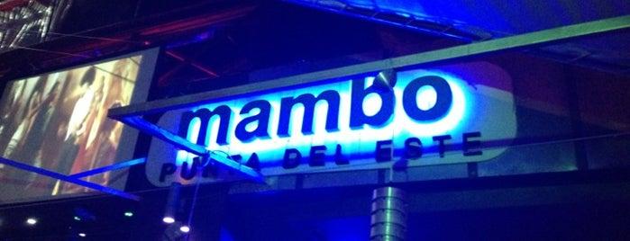 Mambo Club is one of Locais curtidos por Agustin.