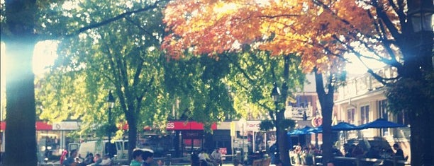 Harvard Square is one of Beantown.