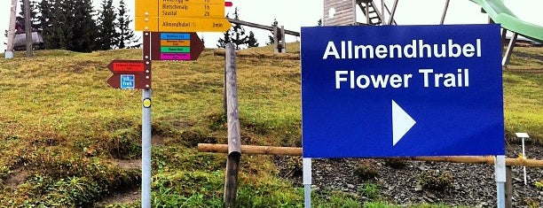 Allmendhubel is one of Posti che sono piaciuti a Amit.