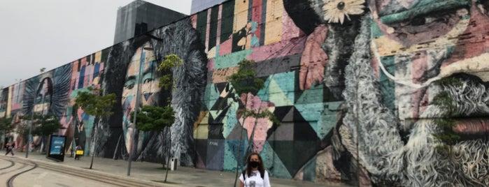 Muro das Etnias is one of Rio.
