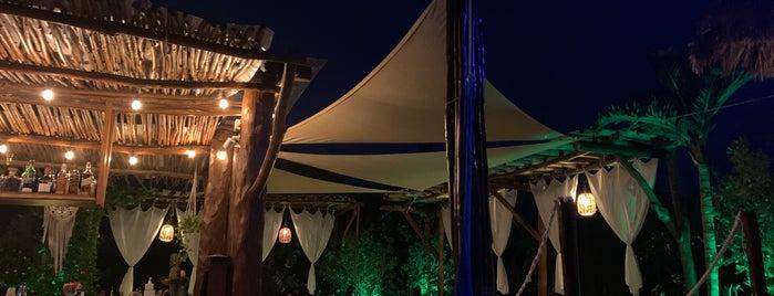 ALMA pool  lounge is one of Tulum & Holbox | Hotspots.