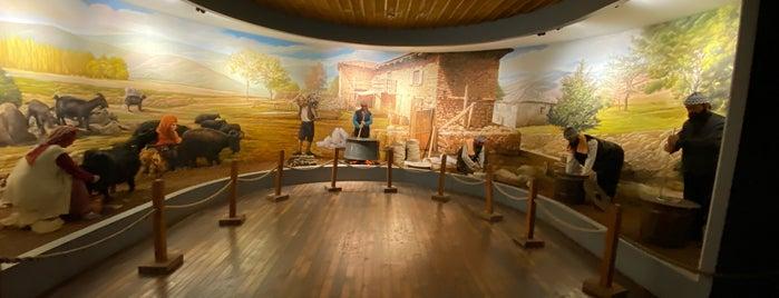 Dondurma Müzesi is one of Locais curtidos por Selcan.