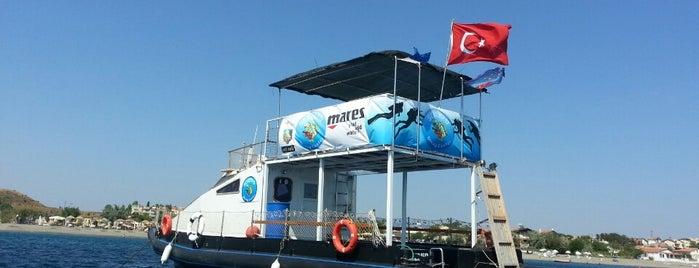 Serenad Dive Center is one of Doruk'un Beğendiği Mekanlar.