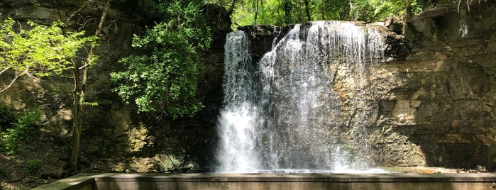 Hayden Falls / Griggs Nature Preserve is one of Annaさんのお気に入りスポット.