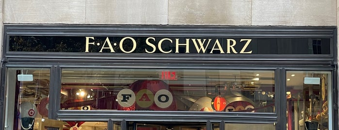 FAO Schwarz is one of NYC: Markets and Shops.