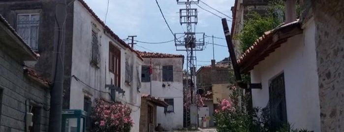 Zeytinli Köy Yolu is one of Türkan : понравившиеся места.