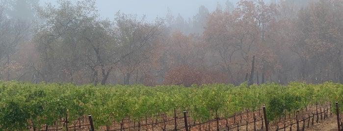 Checkerboard Vineyards is one of Wineries & Vineyards.
