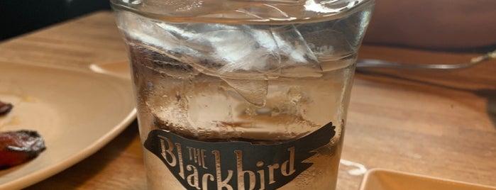 The Blackbird is one of Kara: сохраненные места.