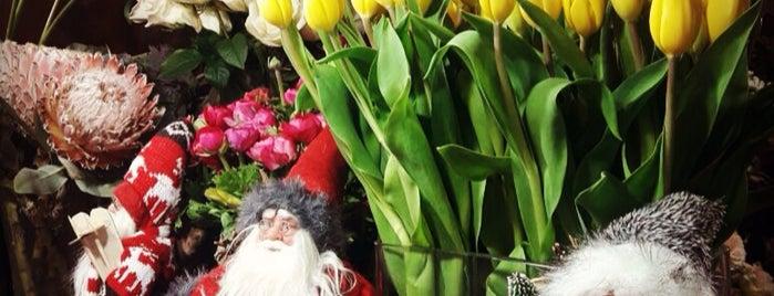 Şakayık Çiçekevi is one of Yaşam Ve Moda Notlarım'ın Beğendiği Mekanlar.