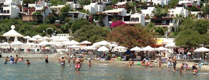 Aktur Plaji is one of Bodrum.