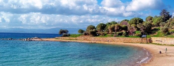 Tekke Plajı is one of Çeşme ve Deniz.