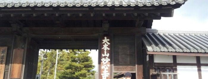 Myoshinji Temple is one of Kyoto-Japan.