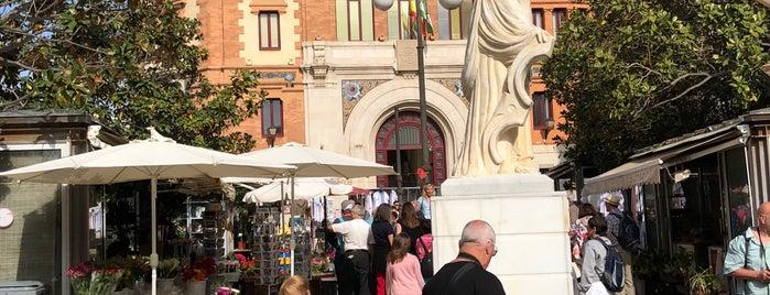 Plaza De Las Flores is one of #2019/2020 Sevilla Andalucia.