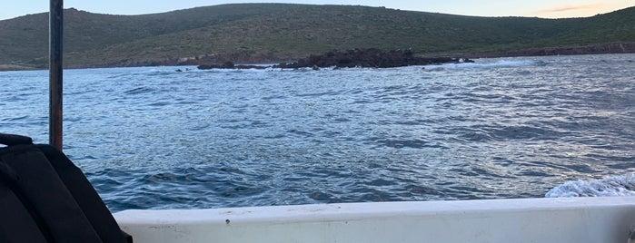 Zeytineli Plajı is one of İzmir.