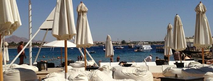 Wind Beach - Pacha Sharm is one of Lieux qui ont plu à Alina.