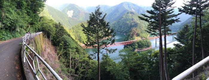 奥大井レインボーブリッジ is one of Lugares favoritos de 西院.