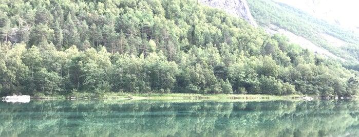 Kylling bru is one of Norge 2019.