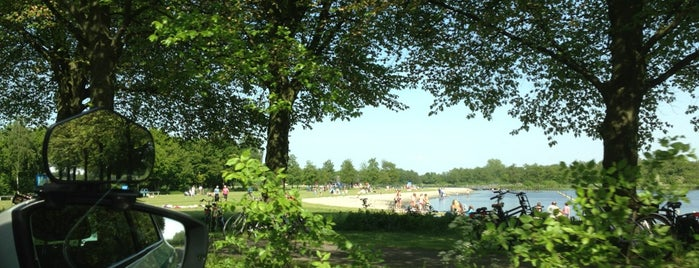 Het Twiske is one of swim #sop020.